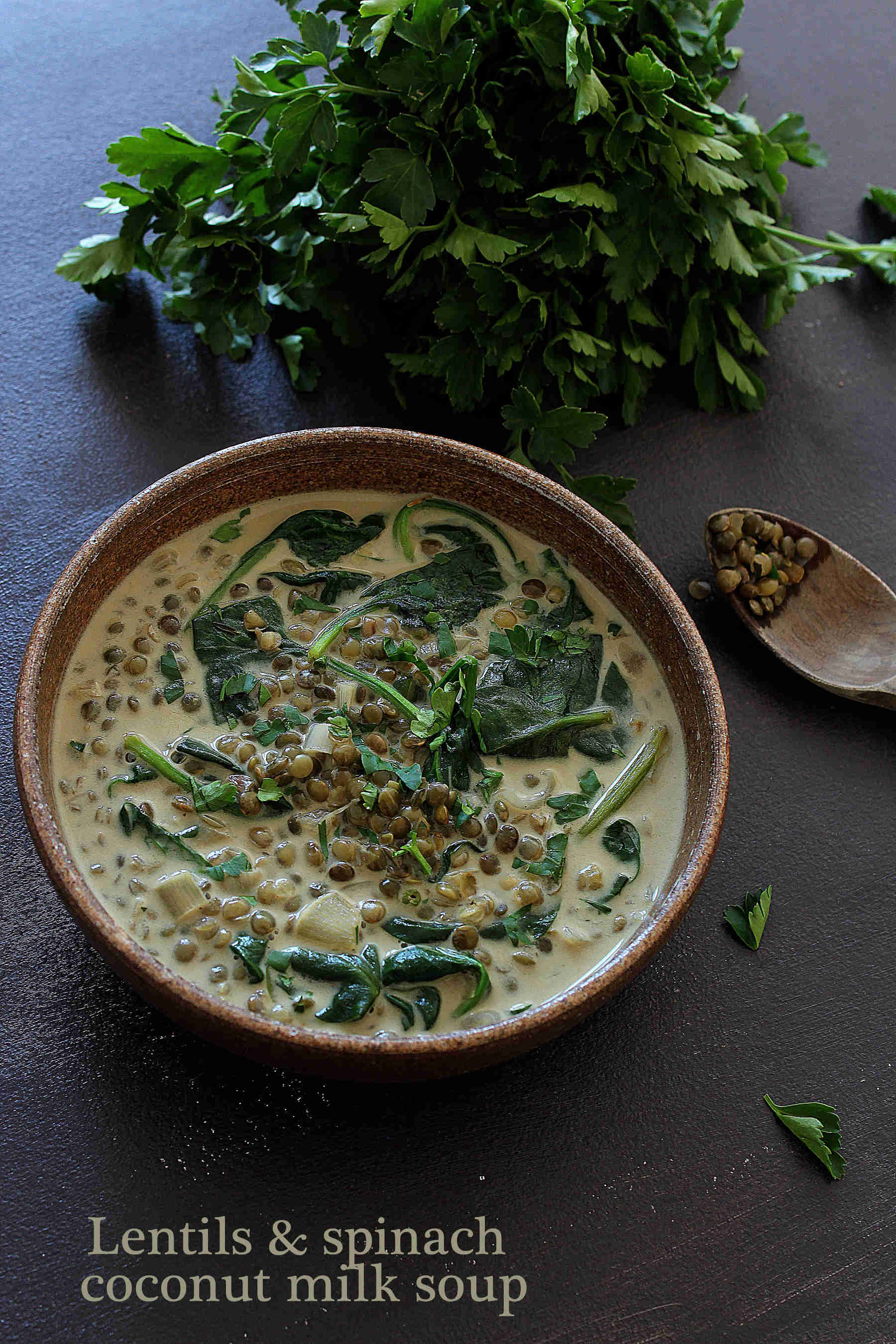 Lentils & spinach coconut milk soup