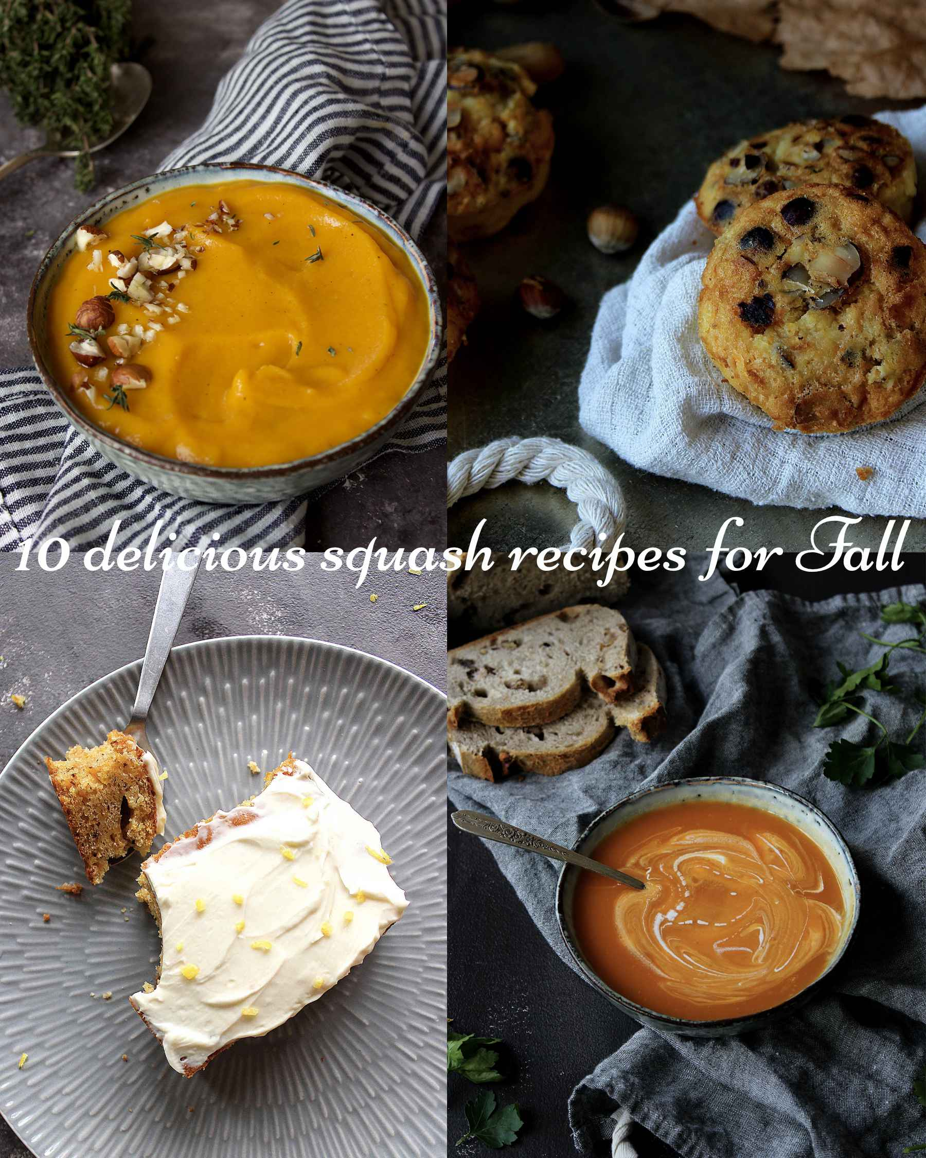 10 delicious squash recipes to try this Fall